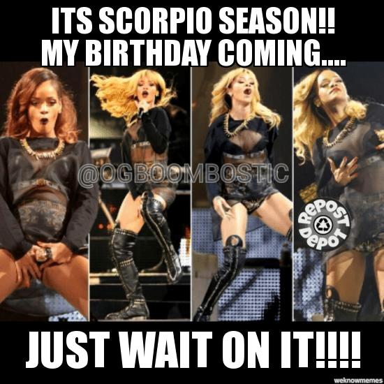 20 Best Scorpio Memes Astrology Special Sayingimages Com