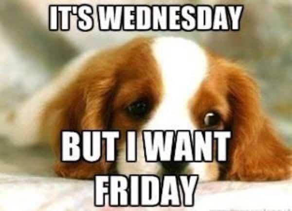 its wednesday meme