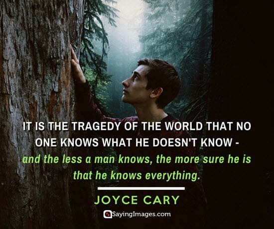 joyce cary tragedy quotes