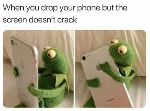 kermit the frog drop your phone memes