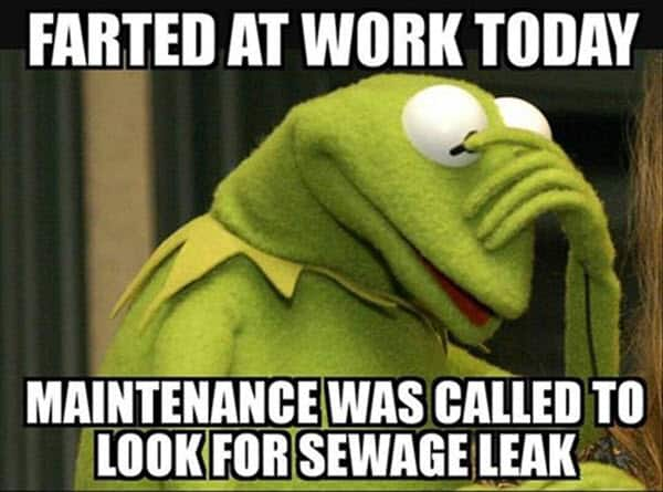 kermit the frog farted at work today memes