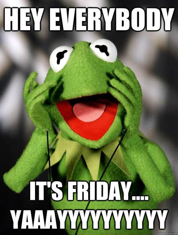 kermit the frog hey everybody memes