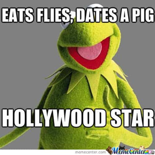 kermit the frog hollywood star memes
