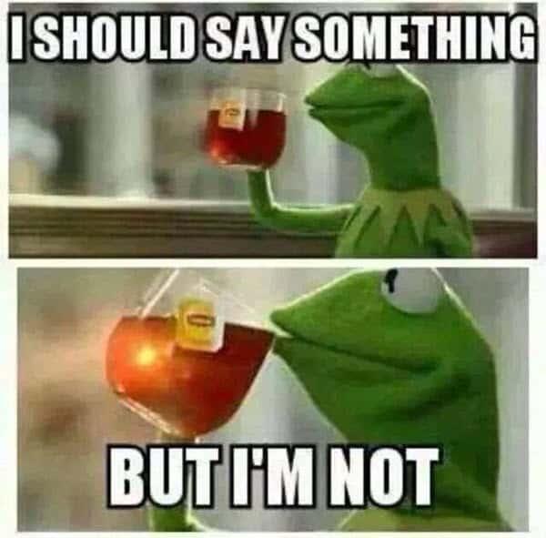 kermit the frog i should say something memes