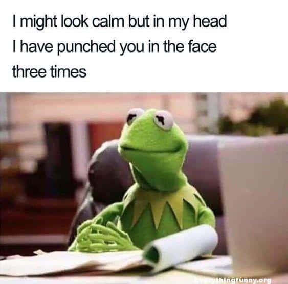 kermit the frog look calm memes