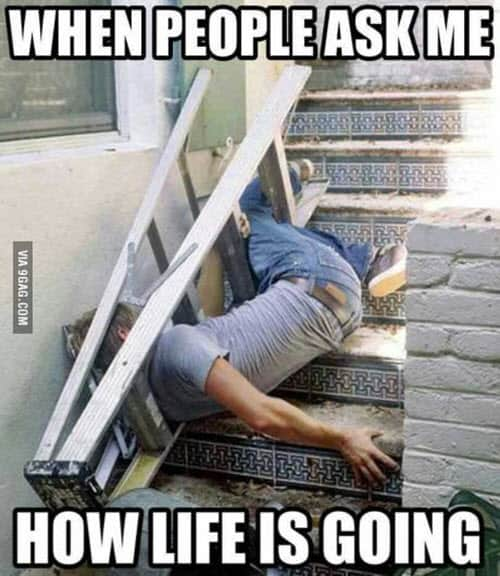 life ask meme