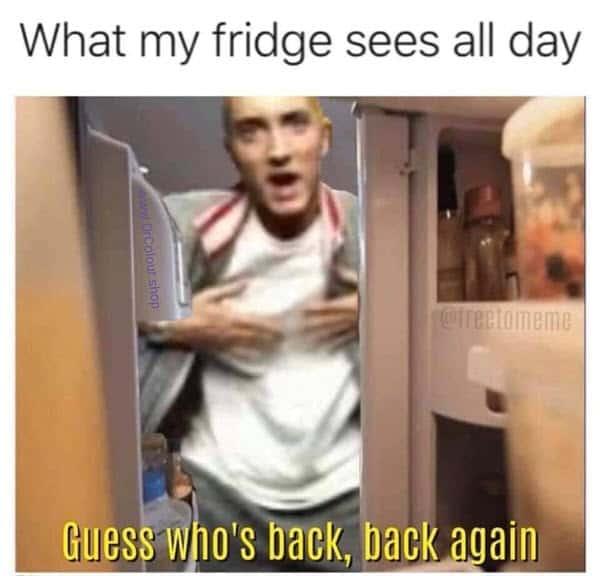 lockdown fridge memes