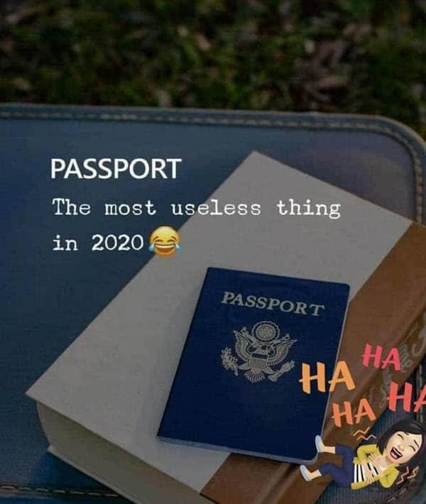 lockdown passport memes