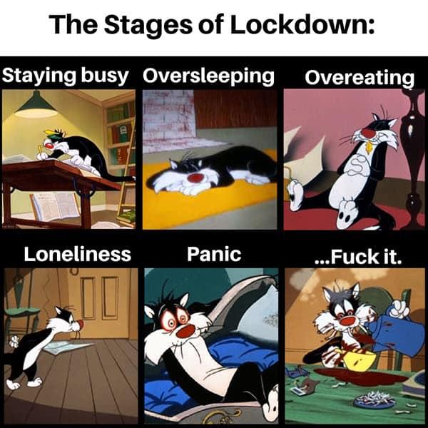 lockdown stages memes