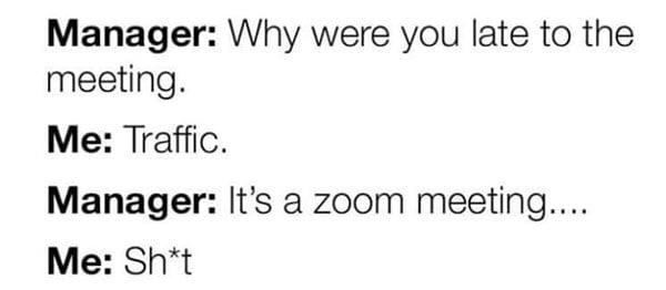 lockdown zoom meeting memes