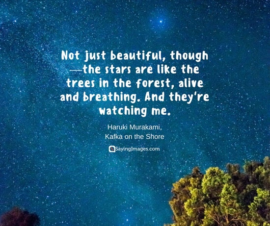30 Beautiful Nature Quotes Sayingimagescom