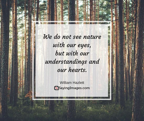 love nature quotes