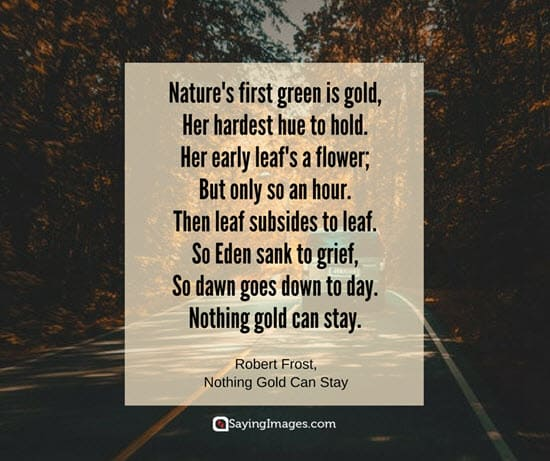love of nature quotes