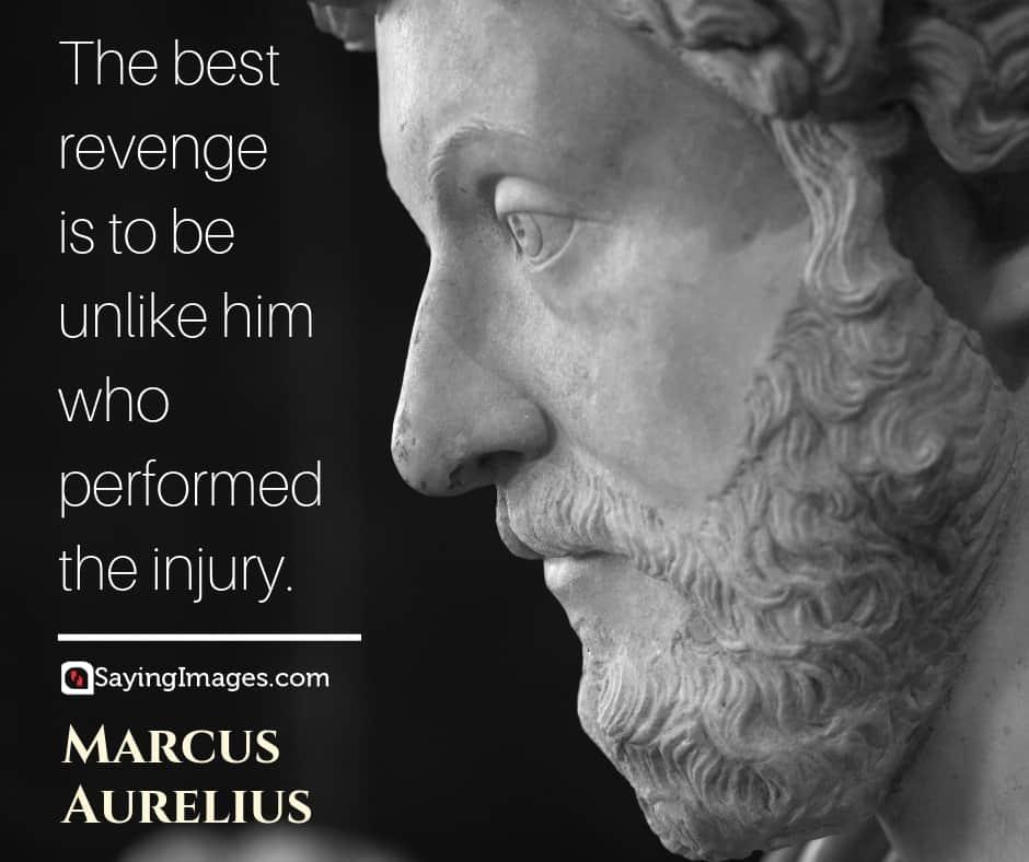 marcus aurelius revenge quotes