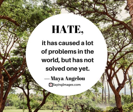 maya angelou hate quotes