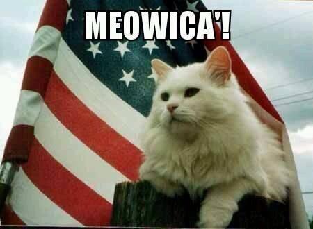 20 Best Veteran's Day Memes | SayingImages.com