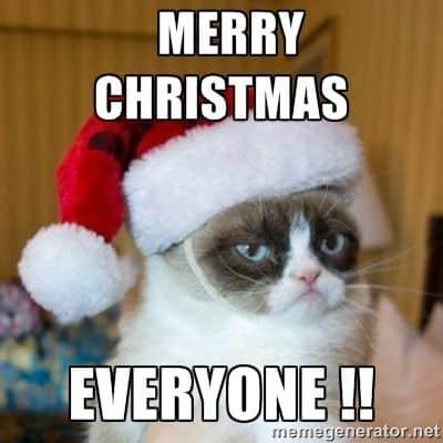 Merry Christmas Memes.20 Funniest Merry Christmas Memes Sayingimages Com