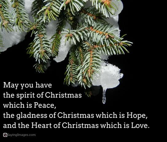 merry-christmas-sayings