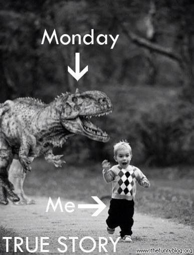 Monday Quotes Funny Humor Laugh. QuotesGram