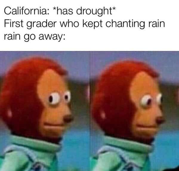 monkey puppet drought meme
