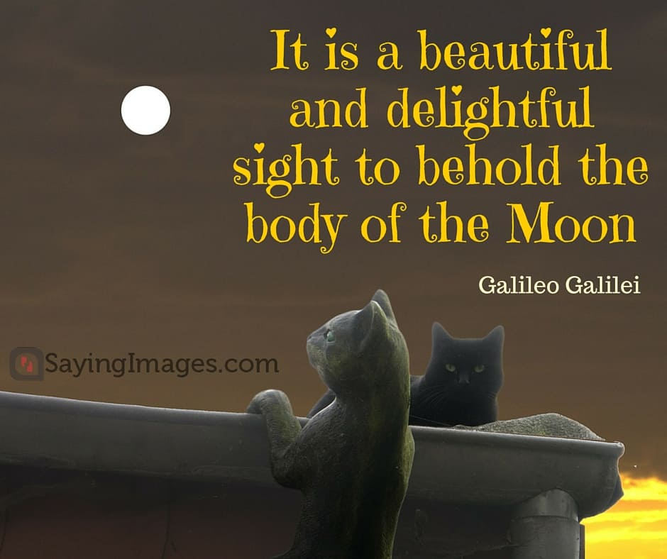 30 Beautiful And Unforgettable Moon Quotes Sayingimages