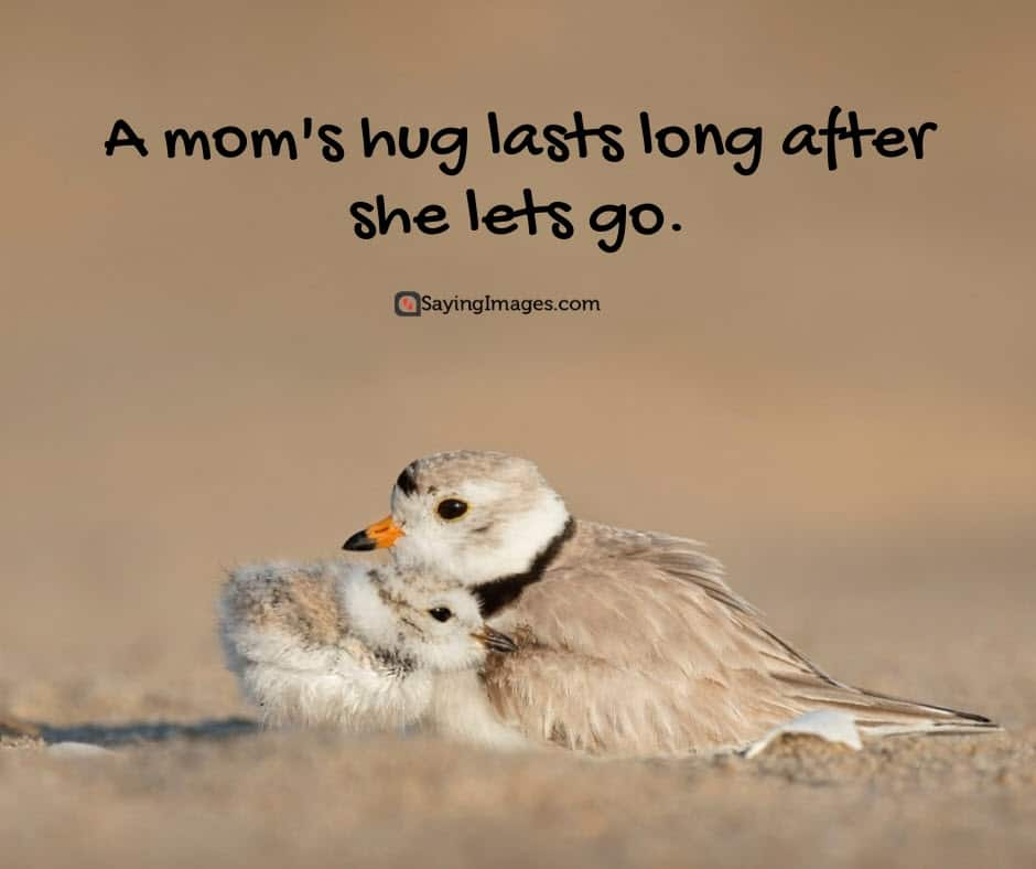 mothers day quotes hug