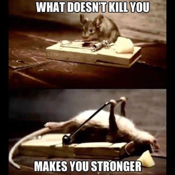 motivational what doesnt kill you makes you stronger memes