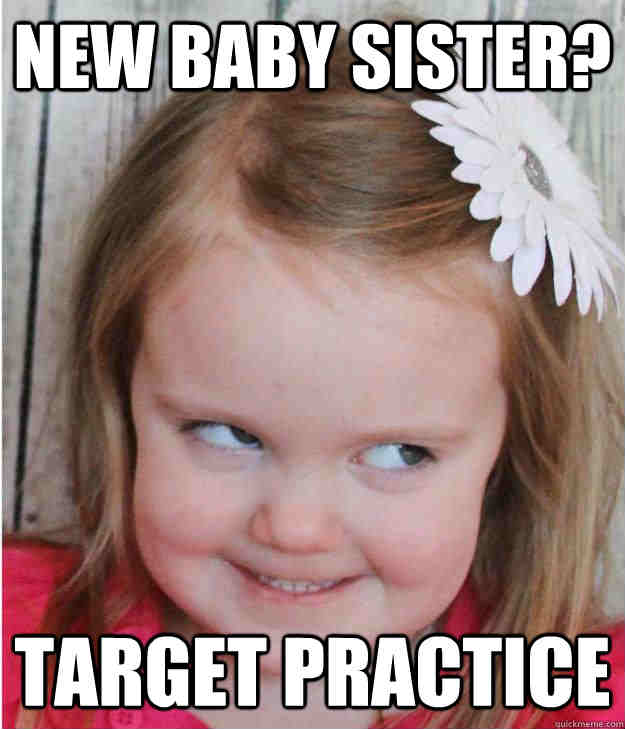 Funny Meme Sister : Totally funny sister memes we can all relate to