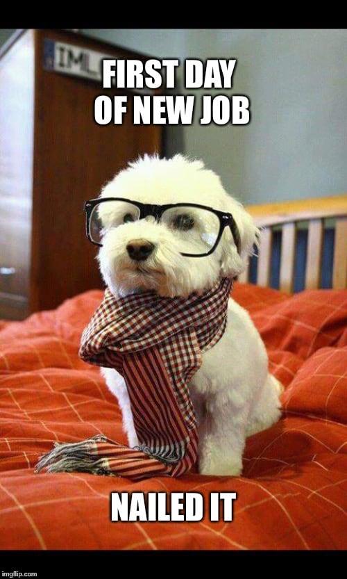 new job nailed it meme