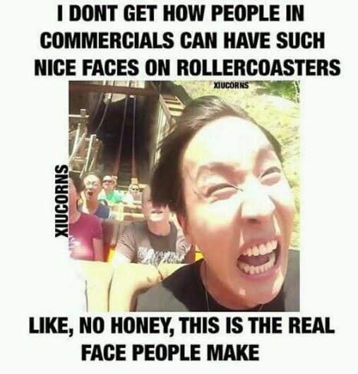 nice faces rollercoaster meme