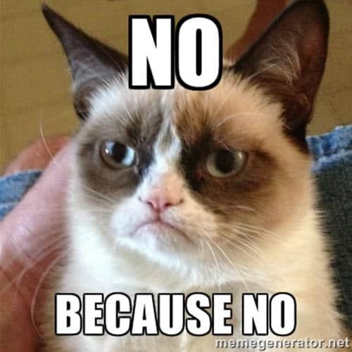 no grumpy cat memes