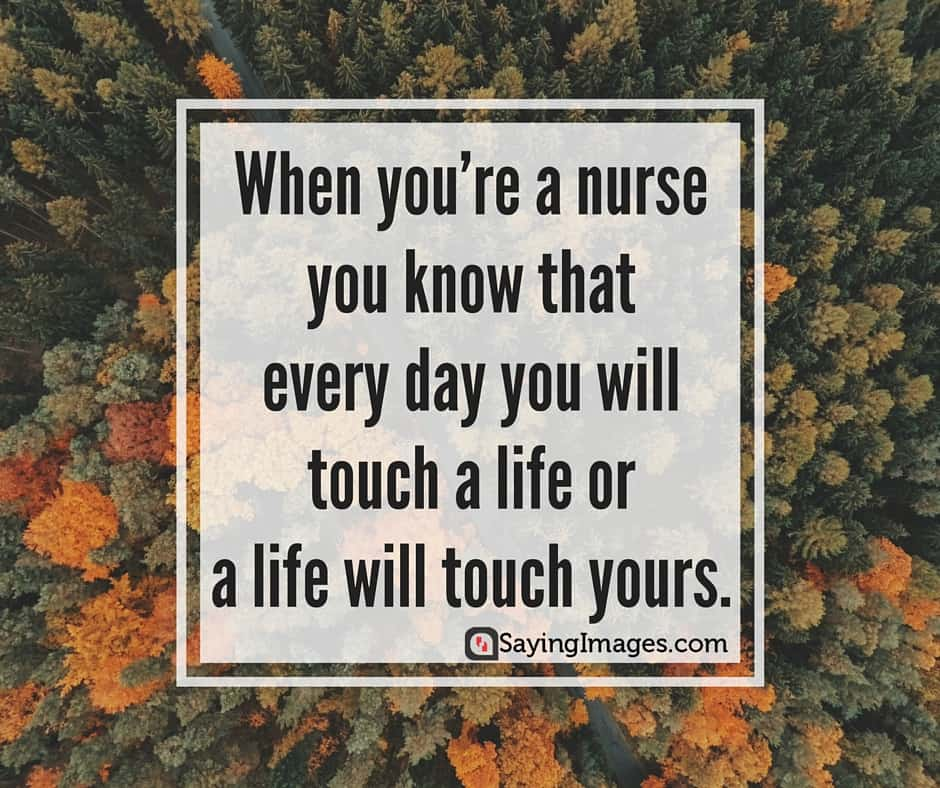 Nursing Quotes Enchanting 40 Inspirational And Compassionate Nurse Quotes  Sayingimages