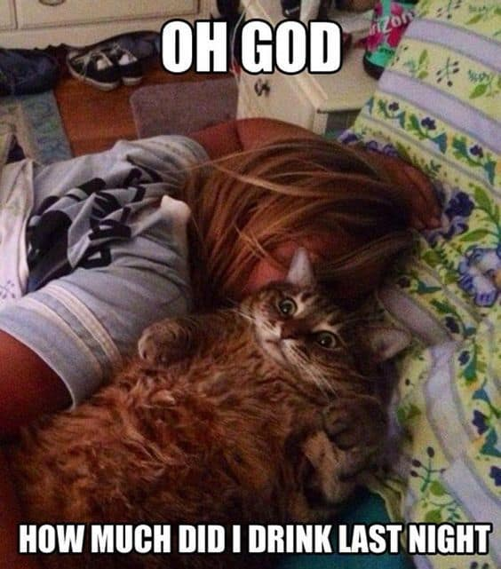 25 Hangover Memes That Are Way Too True | SayingImages com