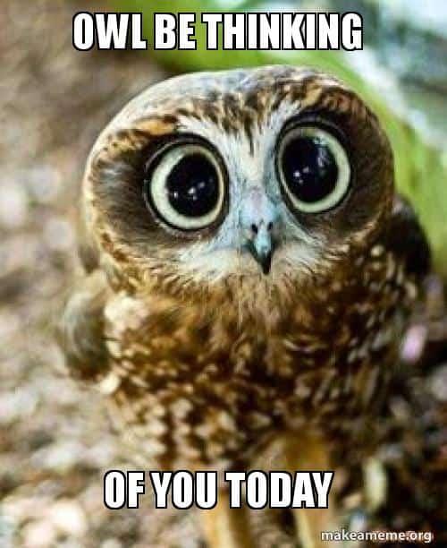 owl be thinking of you meme