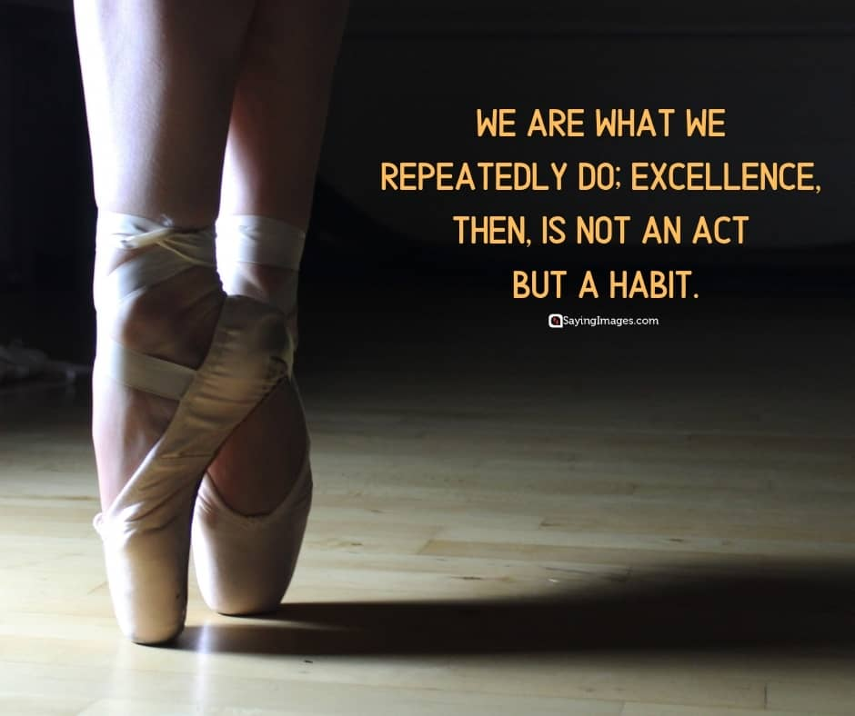 pictures excellence quotes
