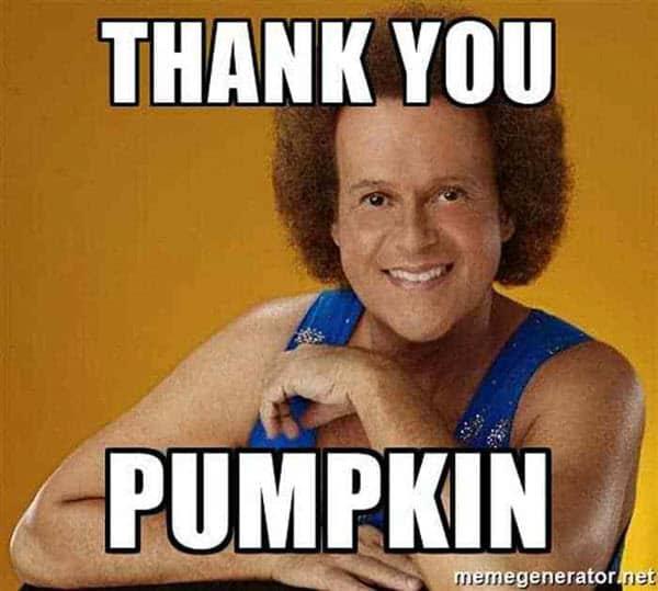pumpkin thank you memes