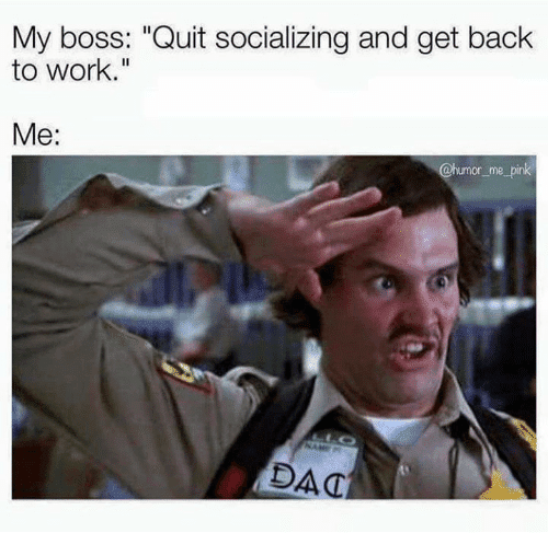 20 Get Back To Work Memes That Will Leave Your Employees ...