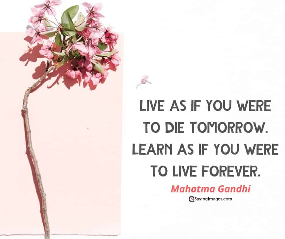 quotes about life die