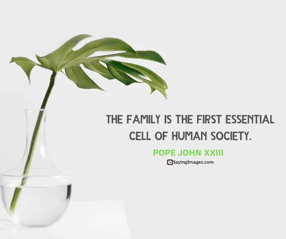 quotes about society family
