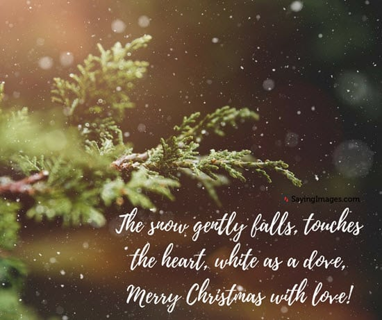 quotes-for-christmas