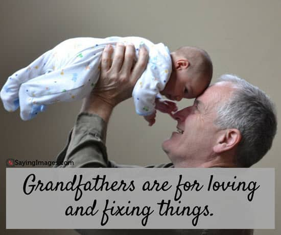 50 Great Happy Grandparents Day Quotes | SayingImages com
