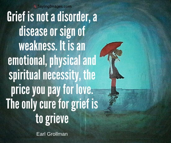 Quotes About Grief Interesting 30 Grief Quotes With Pictures  Sayingimages