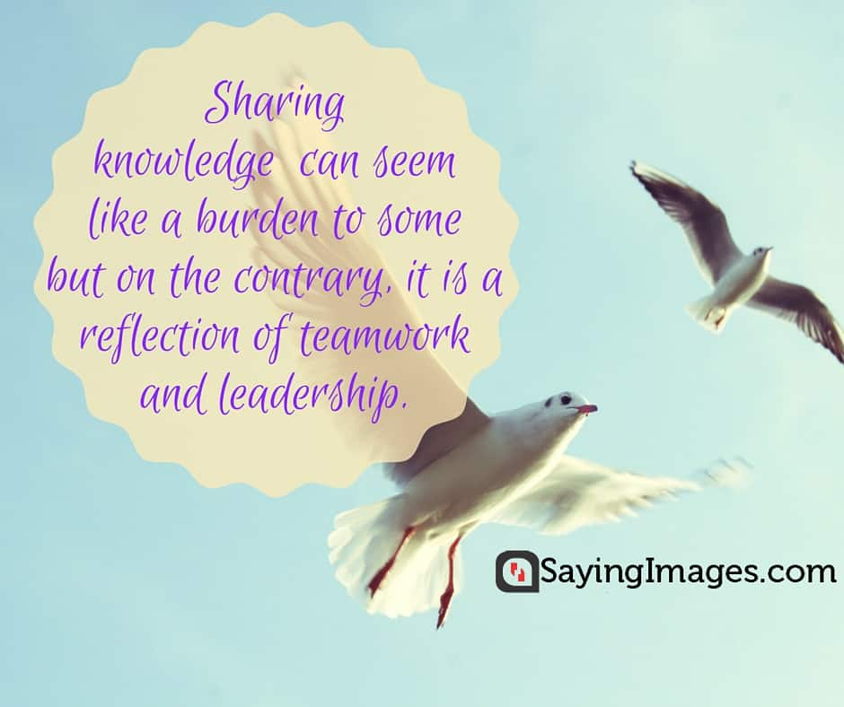 Wisdom And Images: 30 Best Knowledge Quotes