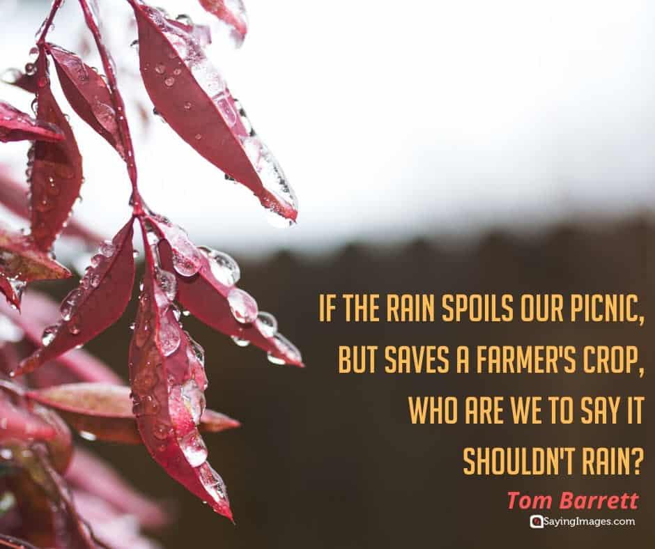 rain crop quotes