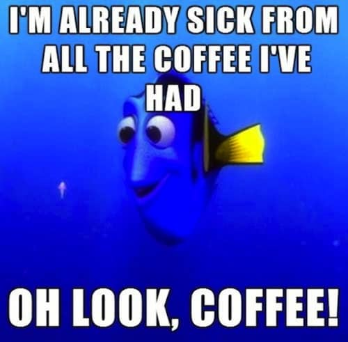 really funny coffee memes