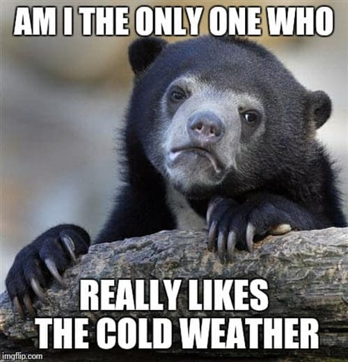 really likes the cold weather meme