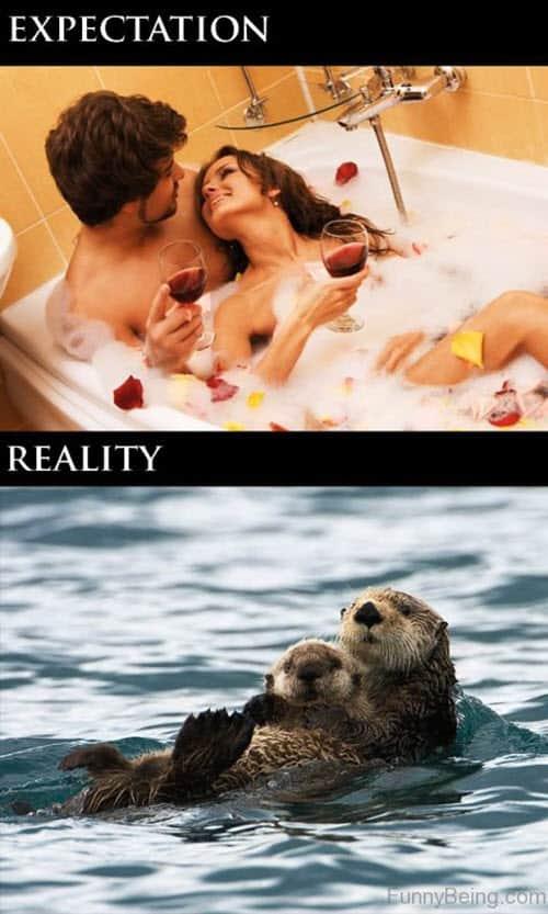 romantic expectation vs reality memes