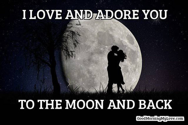 romantic i love and adore you memes