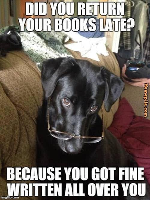 romantic return your books late memes