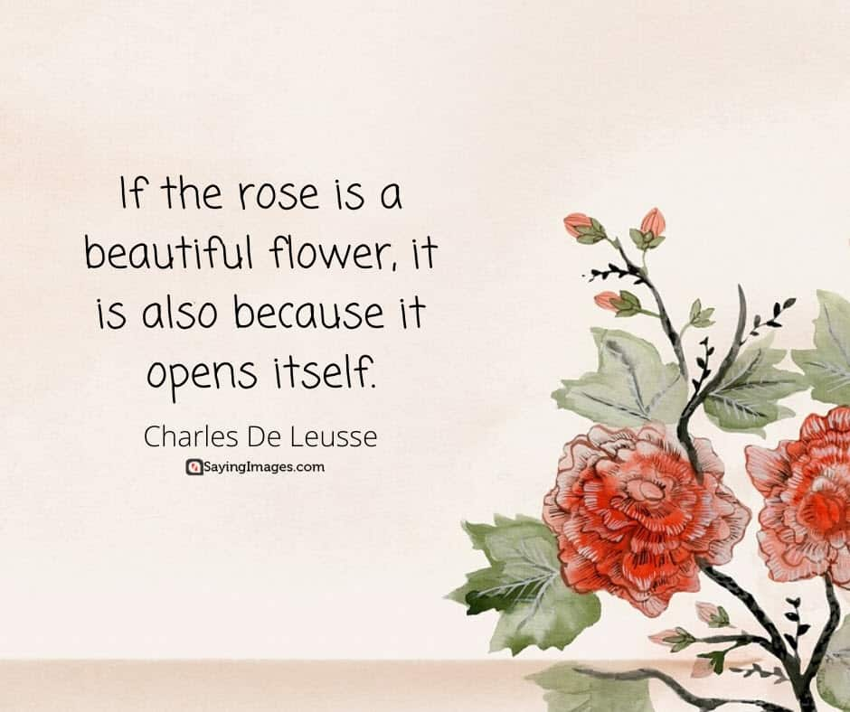 roses flower quotes